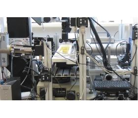 液态薄膜表面纳米颗粒的原位检测
