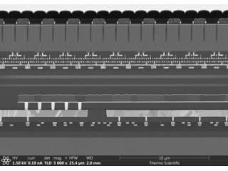 ADVACAM detectors for electronic microscopy