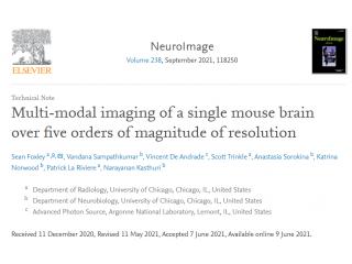 NeuroImage-从亚微米到毫米多尺度的鼠脑多模态成像研究
